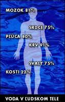voda v tele